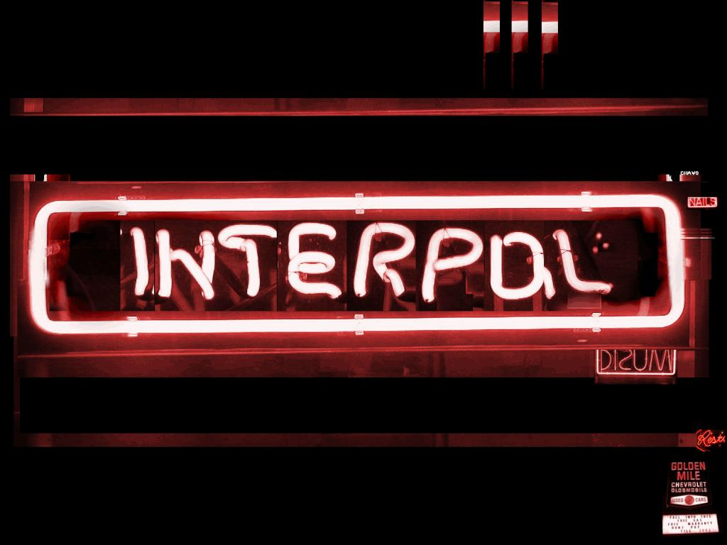 Interpol Reaffirms Its Commitment to Environmental Security