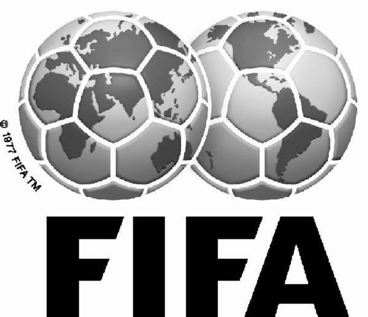 FIFA Criticized Brazil's Preparations for The World Cup
