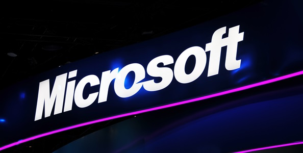 The FBI and Microsoft's Botnet Hunting Excursion's Numbers Revealed