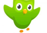 Review - Duolingo