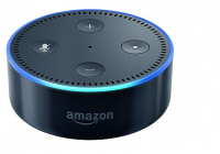 Shoppers Will Be Able To Get In On Alexa's Black Friday Deals